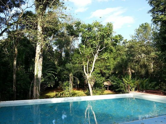 La Cantera Jungle Lodge: Jungle pool!