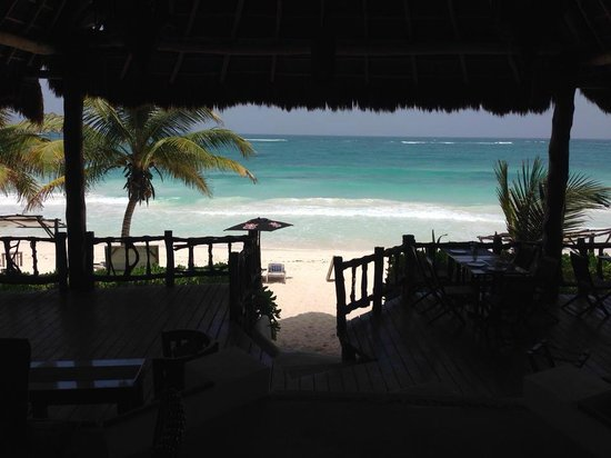 Las Ranitas Eco-boutique Hotel : View from the Restaurant