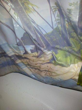 Burghotel Monschau : mold filled shower curtain