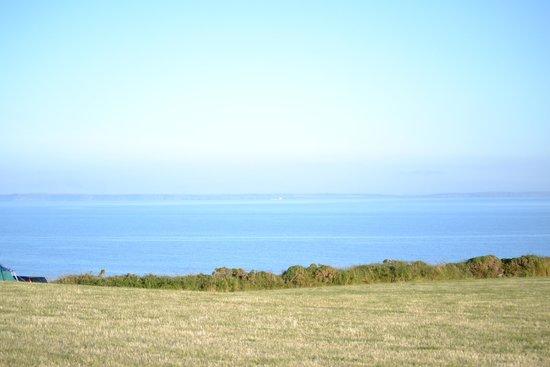 Porthclais Farm Campsite: Tent with a view!