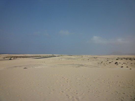 Corralejo Dunes: some dunes!!