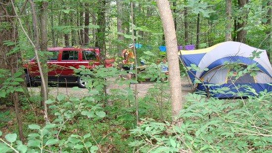 Watkins Glen State Park Campground: Onondaga Village Campsite #175