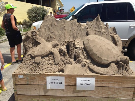 Sea Turtle, Inc.: Sand carving out front