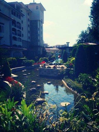 Helena Park Hotel : Hotel grounds