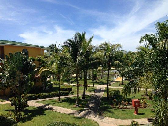 Melia Las Antillas: Bujna i zadbana zieleń hotelowa
