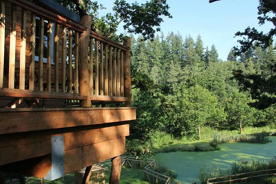 Fox and Hounds Country Hotel: The outside deck overlooking pond