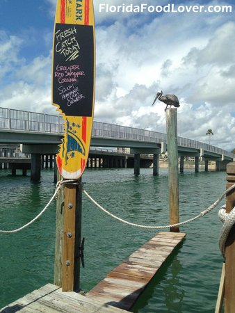 Bait House Restaurant Clearwater Fl