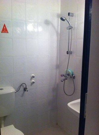 Palace Hotel : shower