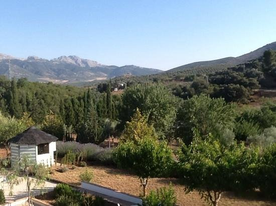 Finca Los Pinos Guesthouse: Fabulous Views
