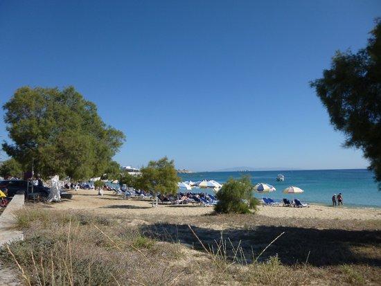 Hotel Kavuras Village : Plage d'Agios Prokopios