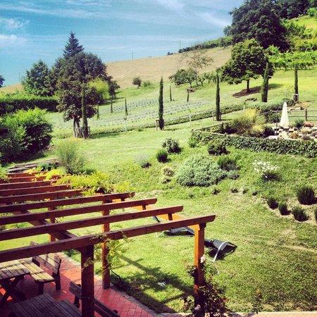 Rastignano, Italien: Gardens