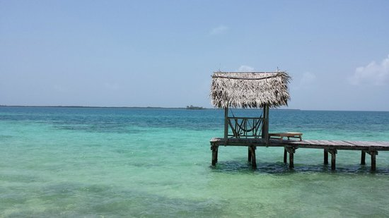 Thatch Caye, a Muy'Ono Resort : T Dock.. sunning, relaxing and swimming in the most beautiful water anywhere