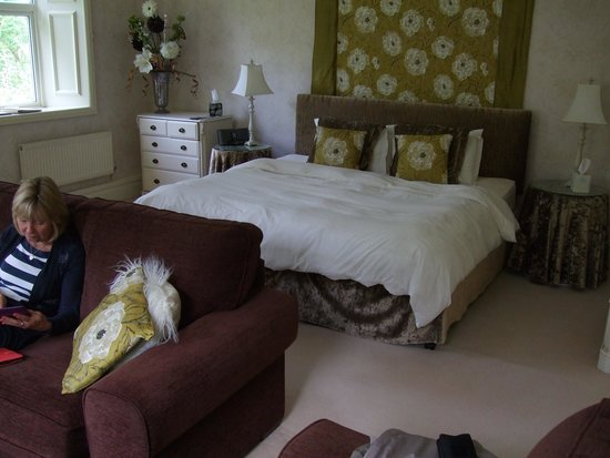 Afon Gwyn Country House: The Alice room