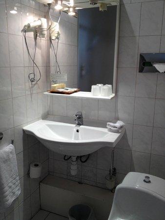 Hotel France Albion: baño