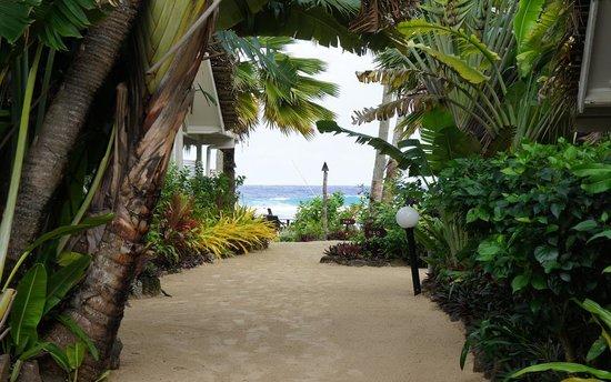 Manuia Beach Resort : Garden footpath