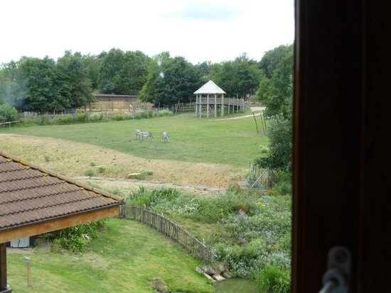 Chessington Safari Hotel: View from room