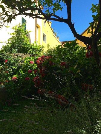 Il Giardino Incantato Bed and Breakfast : Enchanted Garden