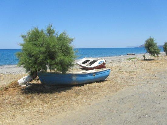 Ledra Maleme: local beach