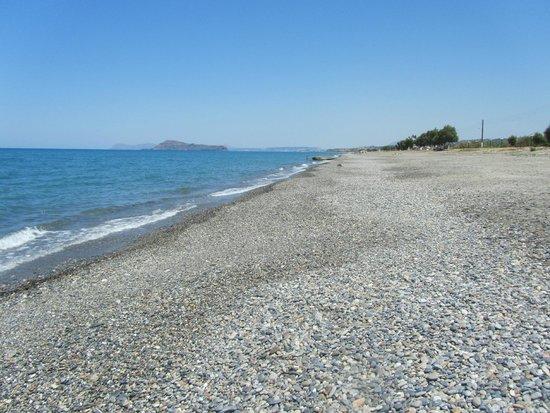 Ledra Maleme: Local beach looking East