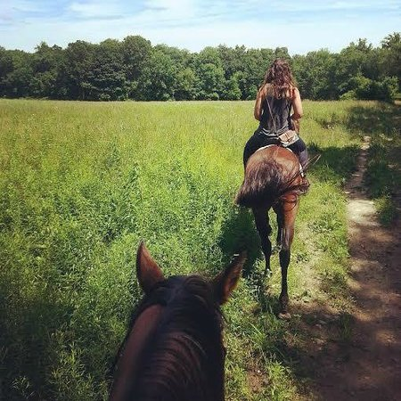 Mount Bethel, Pensilvania: beautiful trail ride!
