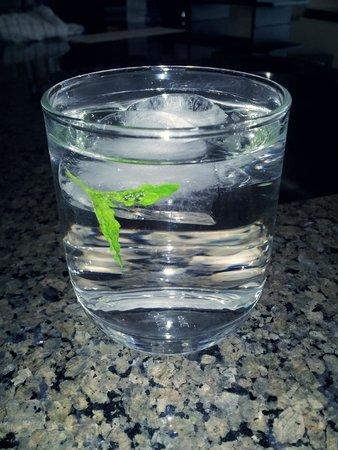 The Oswego Hotel: Mint water every night