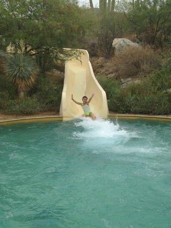 The Ritz-Carlton, Dove Mountain: Slides