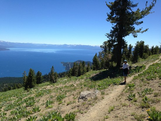 Tahoe Meadows Whole Access Interpretive Trail: Northern TRT near Mud lake - great view eh!