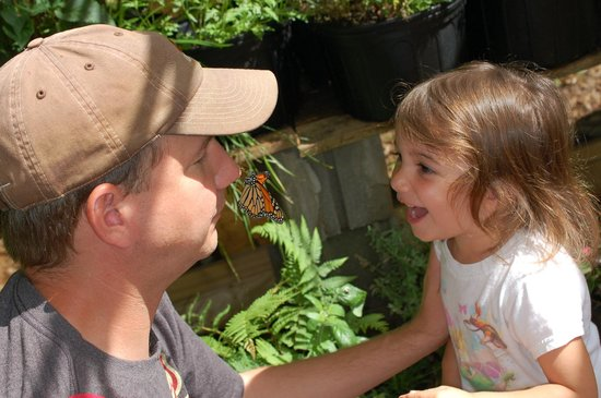 Chattahoochee Nature Center : Little one elated to be that close to a butterfly