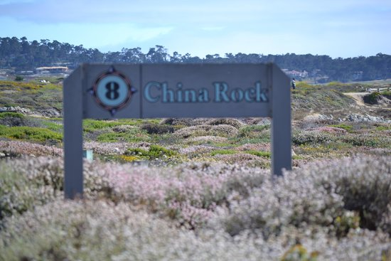 "Sanctuary Beach Resort: A day on the ""17 Mile Drive""     $10.00"