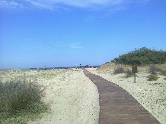 Villaggio Camping Le Dune : passarella in legno che collega il campeggio alla spiaggia