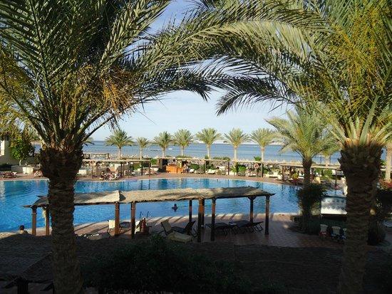 Jaz Belvedere: Pool/beach views