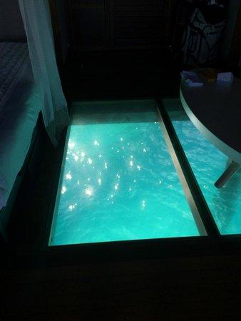 Sofitel Bora Bora Marara Beach Resort: Piso de la habitación que permite ver el mar