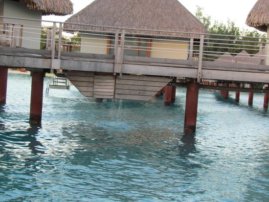 Sofitel Bora Bora Marara Beach Resort: Bungalow