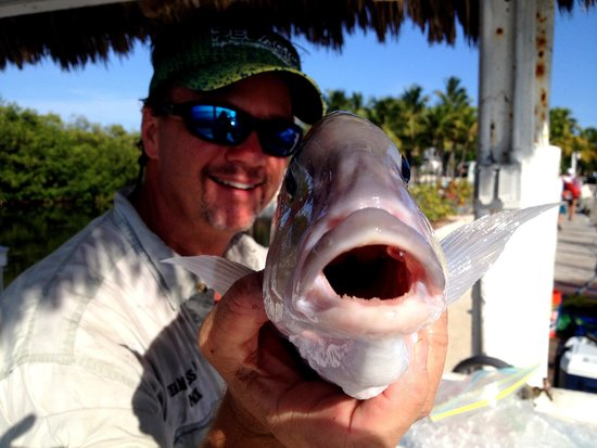 Kon-Tiki Resort: Did I mention the great fishing near by?