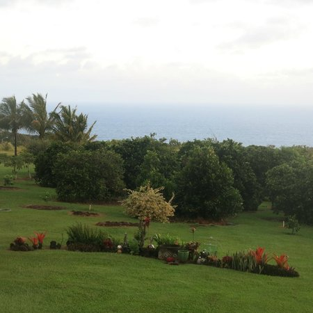 Maui Ocean Breezes : The view from the living room.  Yes, that's the ocean over there!