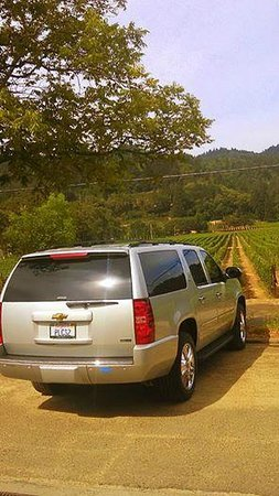 Perata Luxury Tours: An awesome Napa July afternoon!