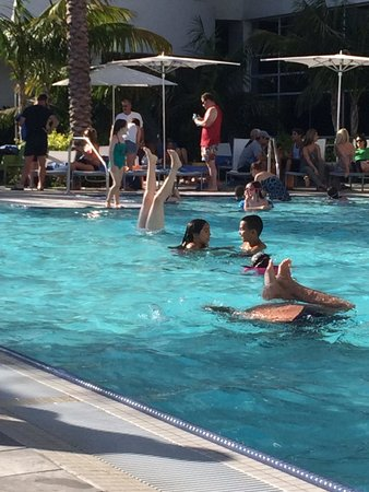 Hilton San Diego Bayfront: Pool Fun