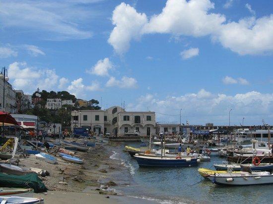 Villa Damecuta: Puerto de Capri