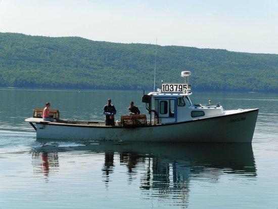North River Kayak: Last day of lobster season.