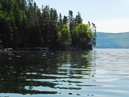 North River Kayak: Lovely reflections on the water.