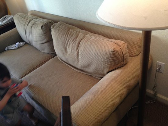 Lake Buena Vista Resort Village & Spa : beat up couch