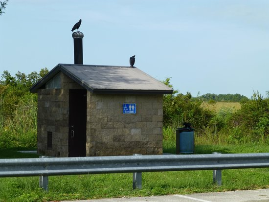 Marsh Beast Airboat Tours : Bathroom facility at the landing.