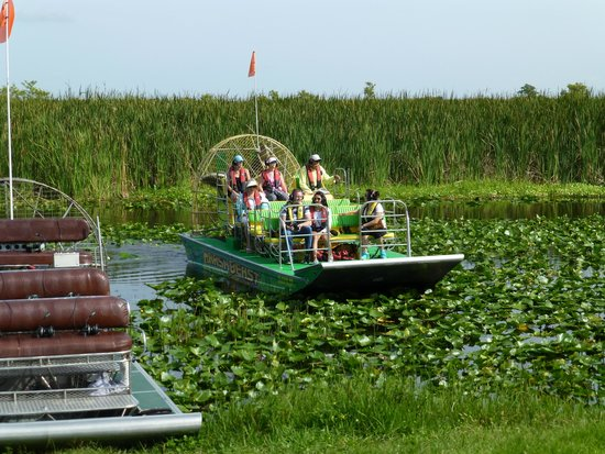 Marsh Beast Airboat Tours : Marsh Beast coming in for a landing.
