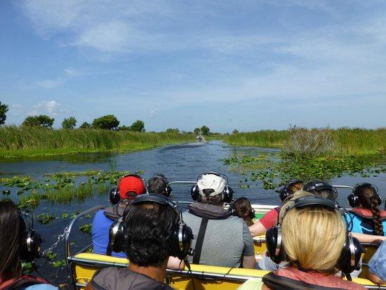 Marsh Beast Airboat Tours : Underway.