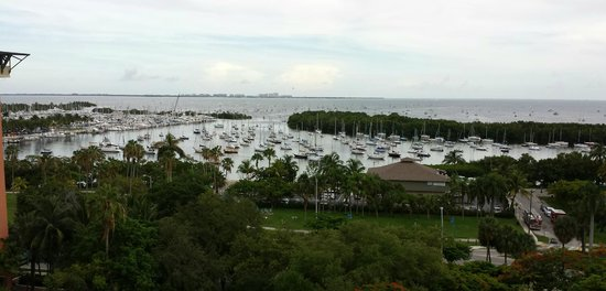 Sonesta Coconut Grove Miami: View from the pool/restaurant area