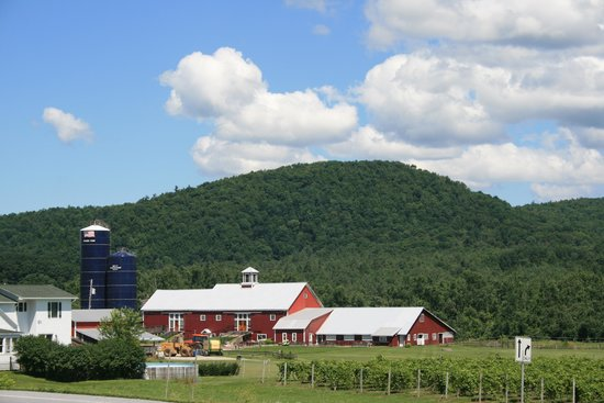 Boyden Valley Winery : Boyden Winery