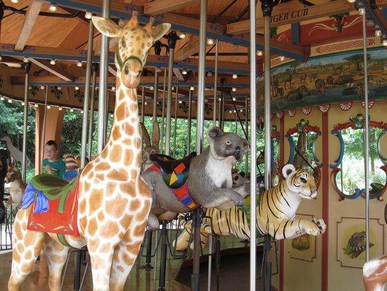 Nashville Zoo: Carousel