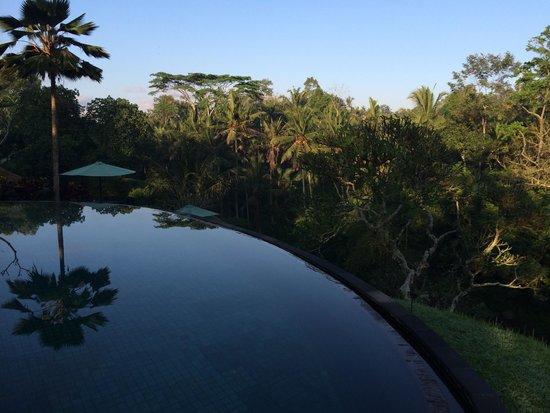 Villa Semana: Infinity pool overlooking river gorge