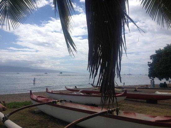 Lahaina Shores Beach Resort: Canoe Tours & SUP hire next door