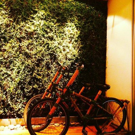 Casa Calma Hotel: recepção do hotel